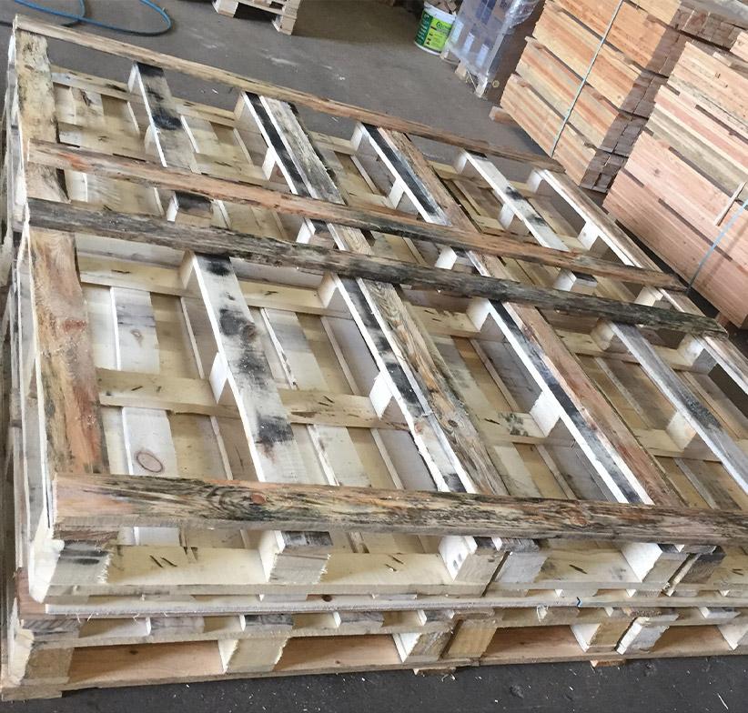Palettes Segrennes PALETTES SEGRE Rea1 Home 1 70